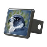 Peregrine Rectangular Hitch Cover