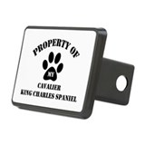 My Cavalier King Charles Span Rectangular Hitch Co