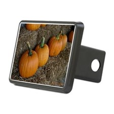 Fall Harvest Hitch Cover