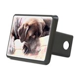 Chocolate Lab Rectangular Hitch Cover