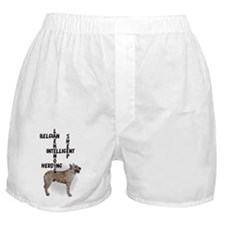 Laekenois crossword puzzle Boxer Shorts