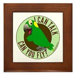 I Can Talk, Can You Fly? Yellow Nape Amazon Framed