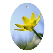Buttercup Oval Ornament