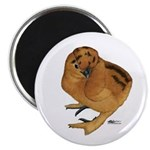 "Red Silkie Chick 2.25"" Magnet (100 pack)"