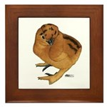 Red Silkie Chick Framed Tile