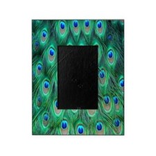 Peacock Picture Frame