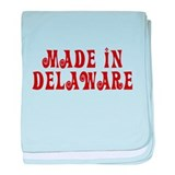 Made In Delaware baby blanket