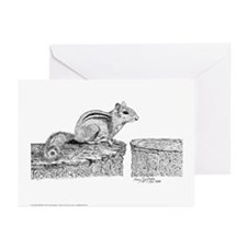 Chipmunk Pen & Ink Greeting Cards 6 Pck