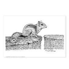 Chipmunk Pen & Ink Postcards (8 Pck)