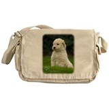 Lagotto Romagnollo 8T21D-10 Messenger Bag