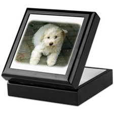 Lagotto Romagnollo 8T22D-09 Keepsake Box