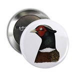 """Ringneck Rooster Head 2.25"""" Button (10 pack)"""