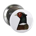 """Ringneck Rooster Head 2.25"""" Button"""