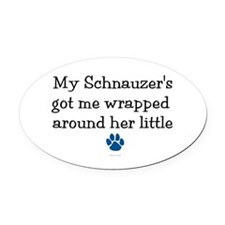 Wrapped Around Her Paw (Schnauzer) Oval Car Magnet