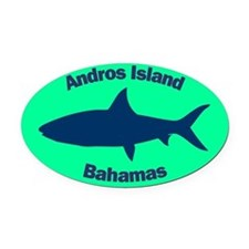 Andros Island Oval Car Magnet (Green)