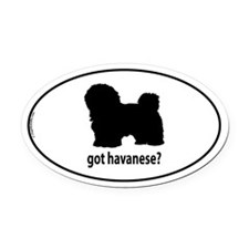 Got Havanese? Oval Car Magnet
