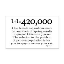 420,000 Cat Overpopulation Rectangle Car Magnet