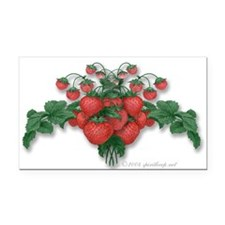 Strawberries! Rectangle Car Magnet.)