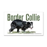 Creeping Border Collie Rectangle Car Magnet