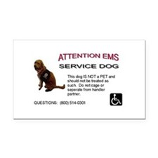 Rectangle Car Magnet: EMS Notice