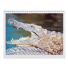 Crocodile Wall Calendar