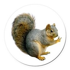 Peace Squirrel Round Car Magnet