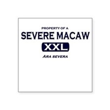 Property of Severe Macaw Square Sticker