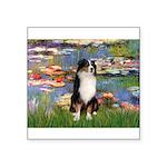 Lilies2-Tri Aussie Shep2 Square Sticker 3