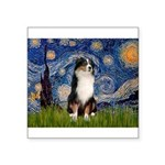 Starry - Tri Aussie Shep2 Square Sticker 3