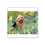 Irises - Aussie Terrier Square Sticker 3