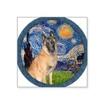 Starry/Belgian Malanois Square Sticker 3