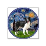 Starry / Border Collie (Z) Square Sticker 3