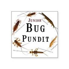 """Junior Bug Pundit"" Square Sticker"
