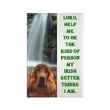 Cool Irish items Rectangle Magnet (100 pack)