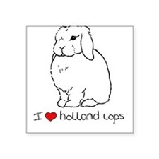 I Love Holland Lop Rabbits Square Sticker