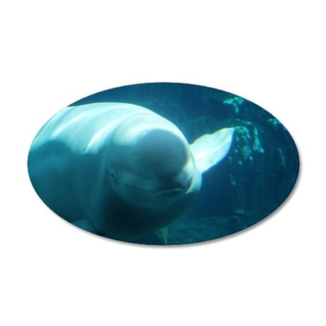 Close up of a Beluga Whale 3 22x14 Oval Wall Peel