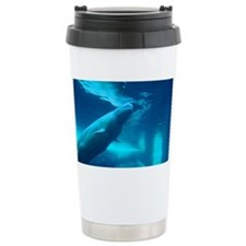 A Beluga Whale underwater Ceramic Travel Mug