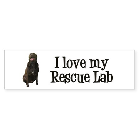Rescue Lab Sticker (Bumper)