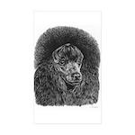 Black poodle Sticker (Rectangle 50 pk)