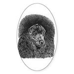 Black poodle Sticker (Oval 50 pk)