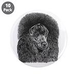 Black poodle 3.5