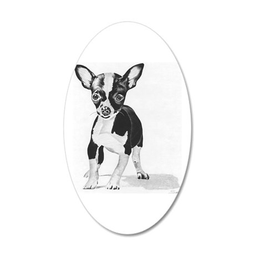 chihuahua 38.5 x 24.5 Oval Wall Peel