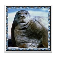 Bearded Seal Tile Coaster
