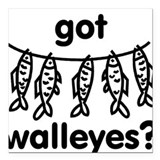 got walleye? Square Car Magnet
