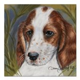Irish Red & White Setter Square Car Magnet