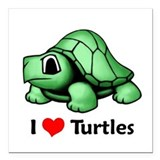I Love Turtles Square Car Magnet