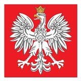 square polish eagle Square Car Magnet