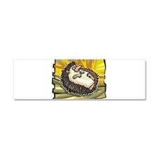 Hedge Hog Car Magnet 10 x 3