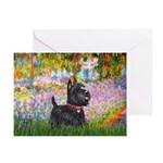 Garden (Monet) - Scotty Greeting Cards (Pk of 20)