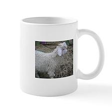 Buck Kid Small Mug